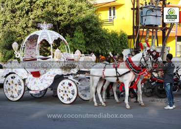 Traditional Horse Cart